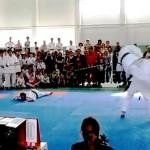 Шоу чемпионов мира по Косики каратэ в Переславле-Залесском (фрагменты) в фотографиях председателя НСНБР А.Г.Огнивцева