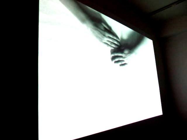 Реальность нереального… обманчивая. Изучение. Изыскания. 2013-тые мастерские. Выставка молодого искусства. Workshop 2013. Автор фото председатель НСНБР А.Г.Огнивцев. IMG_5547