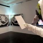 Реальность нереального… обманчивая. Изучение. Изыскания. 2013-тые мастерские. Выставка молодого искусства. Workshop 2013. Автор фото председатель НСНБР А.Г.Огнивцев. IMG_5621