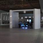 Создающий чувства в движении… Lexus HybridArt. Современное искусство в Манеже 09.08.2013г. после 19 часов. Автор фото председатель НСНБР А.Г.Огнивцев. IMG_5758