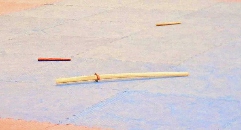 Mcrsi.ru: Чемпионат России по Косики каратэ. Фото блок 3. 2014. Автор фото председатель НСНБР А.Г.Огнивцев. 25.11_2014_9