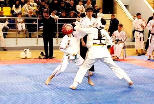 Брянская область. 2-е юношеские Игры боевых искусств. Фото ФКК Брянской области 14122014_5