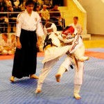 Брянская область. 2-е юношеские Игры боевых искусств. Фото ФКК Брянской области 14122014_7