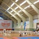 Каратэ: Тольятти. Два стиля на спортивном форуме 18_tk_2