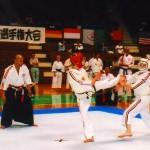 М.В.Крысин. Чемпионат мира по Косики каратэ 2003. Япония. Токио. ch_2003_13