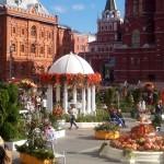 Фестиваль Золотая осень. Москва. 49 площадок продуктов. Автор фото председатель НСНБР А.Г.Огнивцев. 26092016_01