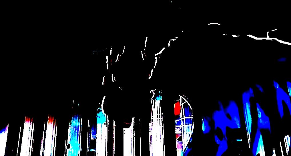 Круг света 2016. Международный фестиваль. Москва. ВДНХ. Автор фото председатель НСНБР А.Г.Огнивцев. 28092016_6